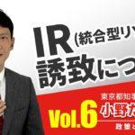 【小野たいすけ 政策とビジョン】IR統合型リゾート誘致について:東京をさらに健全な国際都市へ